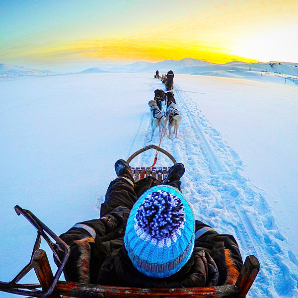 dog sledding svalbard longyearbyen spitsbergen