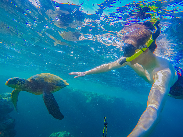 Snorkeling with turtles Na Pali Coast kauai