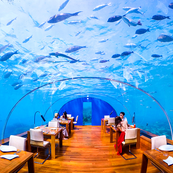 ithaa world's best undersea restaurant conrad maldives rangali island